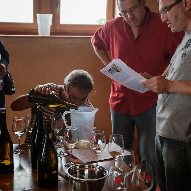 Assemblage des chardonnay milésime 2012. guimbelot.com - 2013%2B09%2B07%2BGuimbelot%2Bd%25C3%25A9gustation%2Bd%25E2%2580%2599assemblage%2Bdu%2Bchardonay%2B2012%2B131.jpg