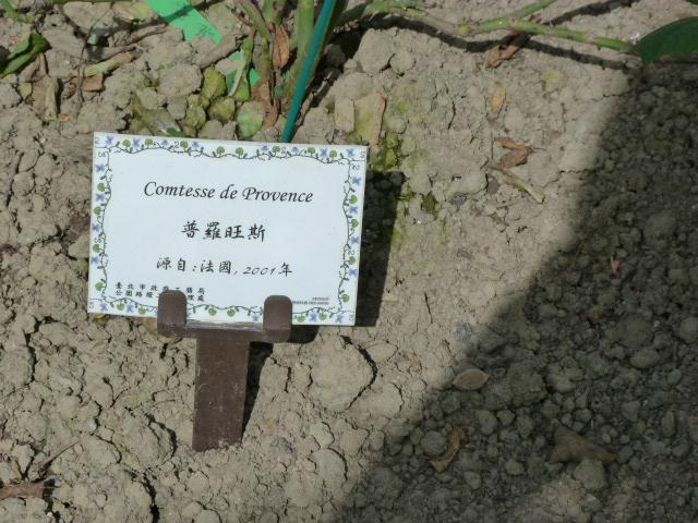 TAIWAN.TAIPEI, shilin une des villas de CKS dans un ancien parc botanique et autres vues - 1sichuan%2B014.JPG