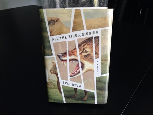 All the Birds, Singing by Evie Wyld: A Request More than a Review