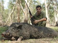 wild_boar_hunting_3L.jpg