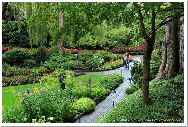 160906_Butchart_Gardens_0067