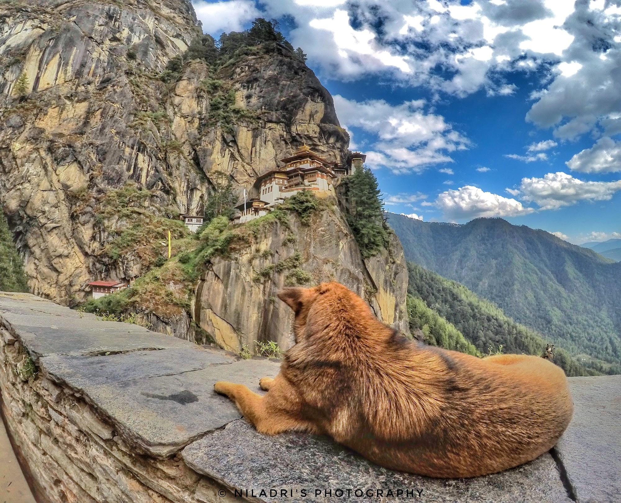 Reisinformatie Bhutan