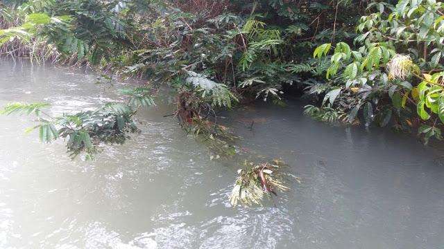 Corpo encontrado boiando nas águas do lago Juá em Santarém, no Pará, é de uma mulher