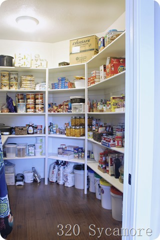 pantry with shelves and counter