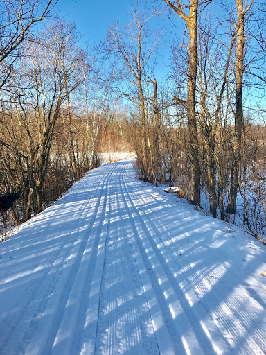 Twin Lakes crossing. Tracks set last night and set up hard overnight.