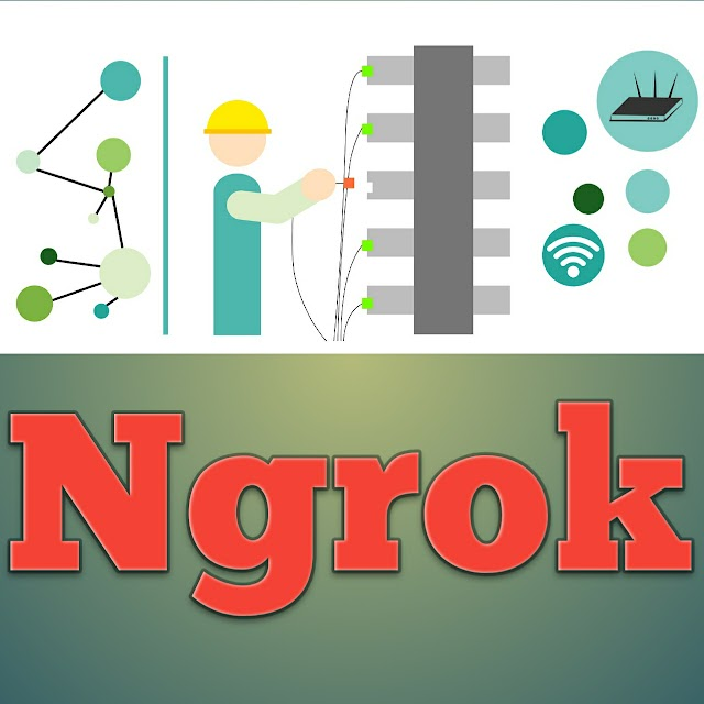 what is ngrok and how it's work