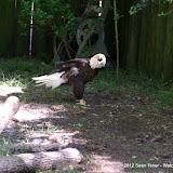 04-07-12 Homosassa Springs State Park - IMGP4574.JPG