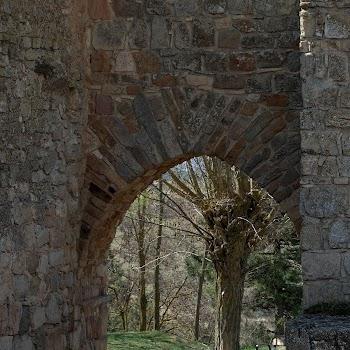 Medinaceli 31-03-2012 12-50-48.NEF.jpg