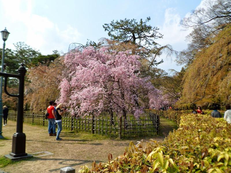 2014 Japan - Dag 10 - tom-SAM_0562-0010.JPG