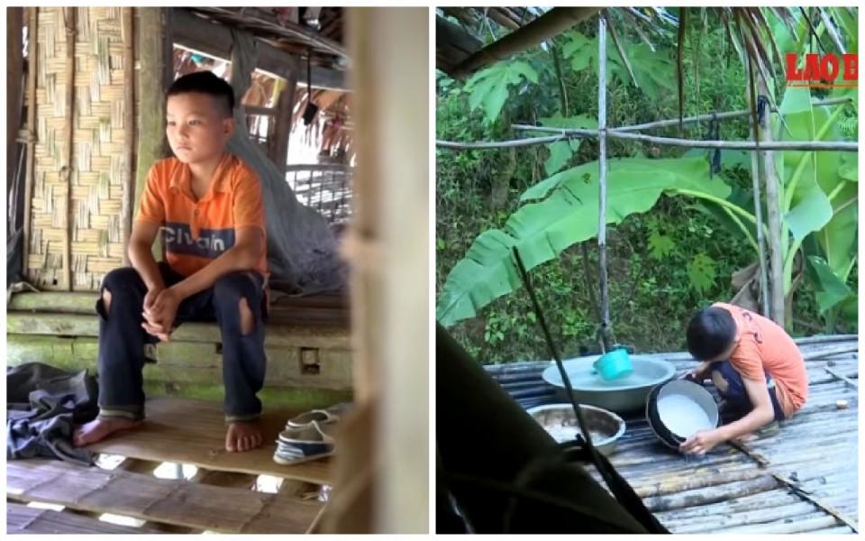 Hidup Sebatang Kara, Kisah Bocah 10 Tahun Bertahan Hidup dengan Bercocok Tanam