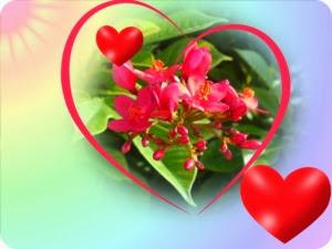 цветок в сердце