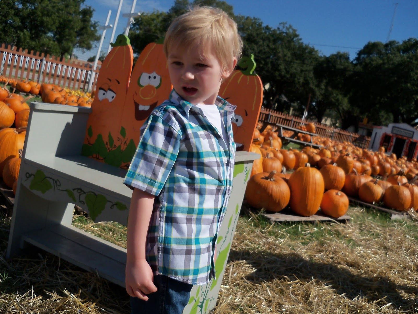 Pumpkin Patch 2015 - 100_0392.JPG