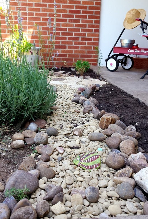 dry river bed w rock rish