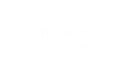 organic-angel-oysters-desktop