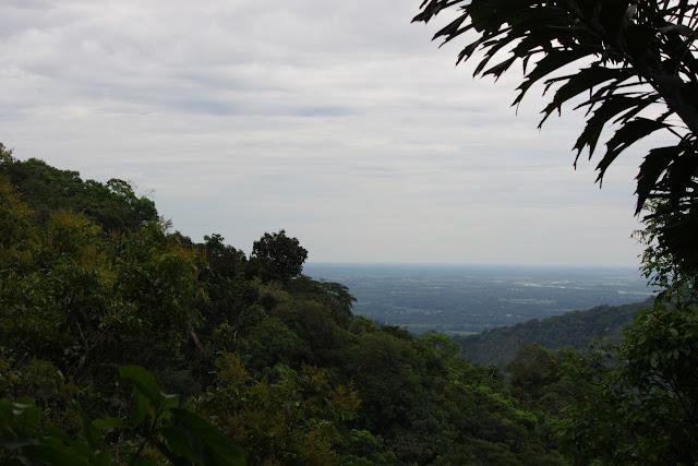 Les Llanos depuis le Bosque Bavaria (Villavicencio, Meta, Colombie), 9 novembre 2015. Photo : J.-M. Gayman