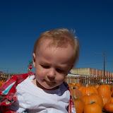 Pumpkin Patch - 115_8261.JPG