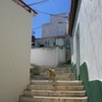 tn_portugal2010_030.jpg