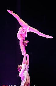 Han Balk Unive Gym Gala 2014-2731.jpg