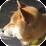Uchio Kondo's profile photo