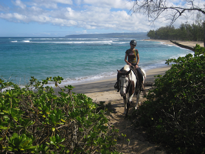 Polo Horse Ride on North Shore Trail