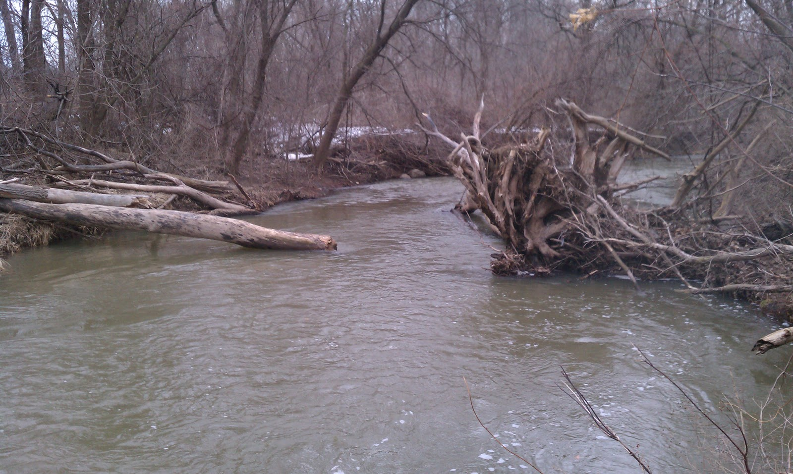 Illinois wisconsin fishing oak and pike river report for Illinois river fishing report