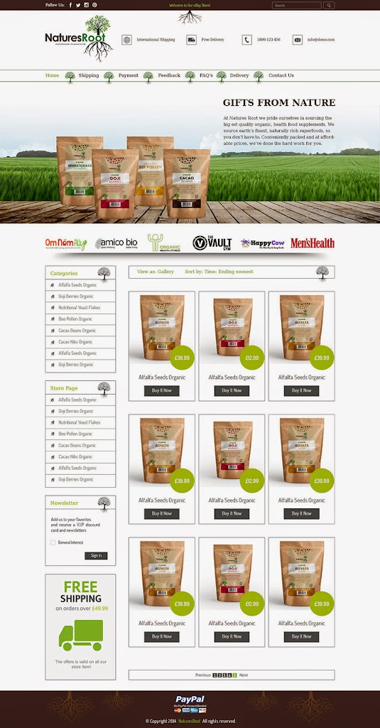 Professional EBay Store Template Custom EBay Store Design Template - Ebay store templates