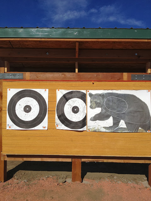 Cool targets with a variety of targets.
