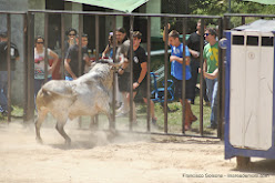 027-peña taurina linares 2014 065.JPG