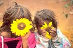 Une fleur du soleil en guise de sourire pour ces enfants aborigènes d'Australie