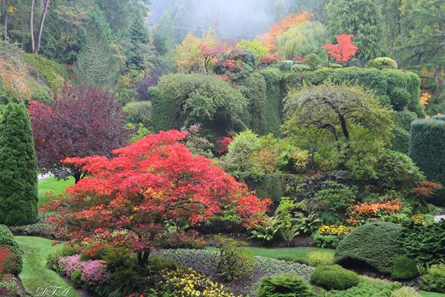 Butchart Gardens Sooke 035