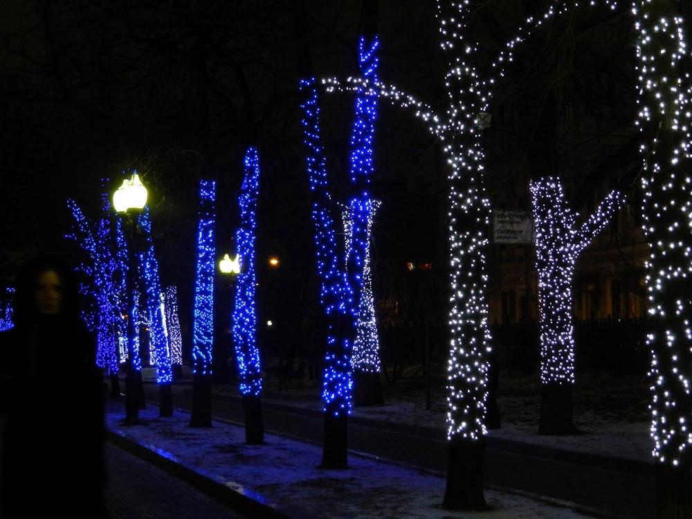 lighting up the lovely park