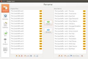 Renombrar series automáticamente con FileBot en Ubuntu - renombrado