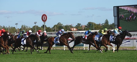 oakleigh plate_finish 1