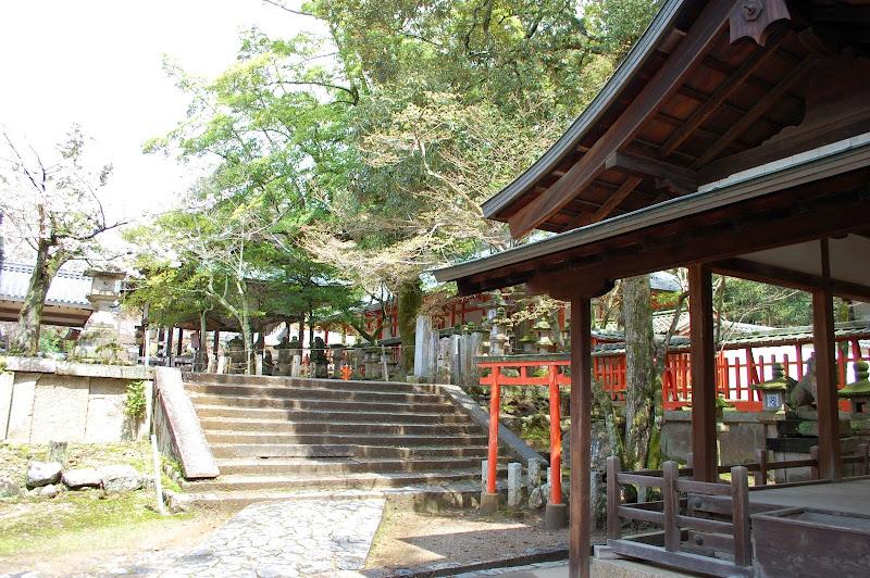 2014 Japan - Dag 8 - jordi-DSC_0617.JPG
