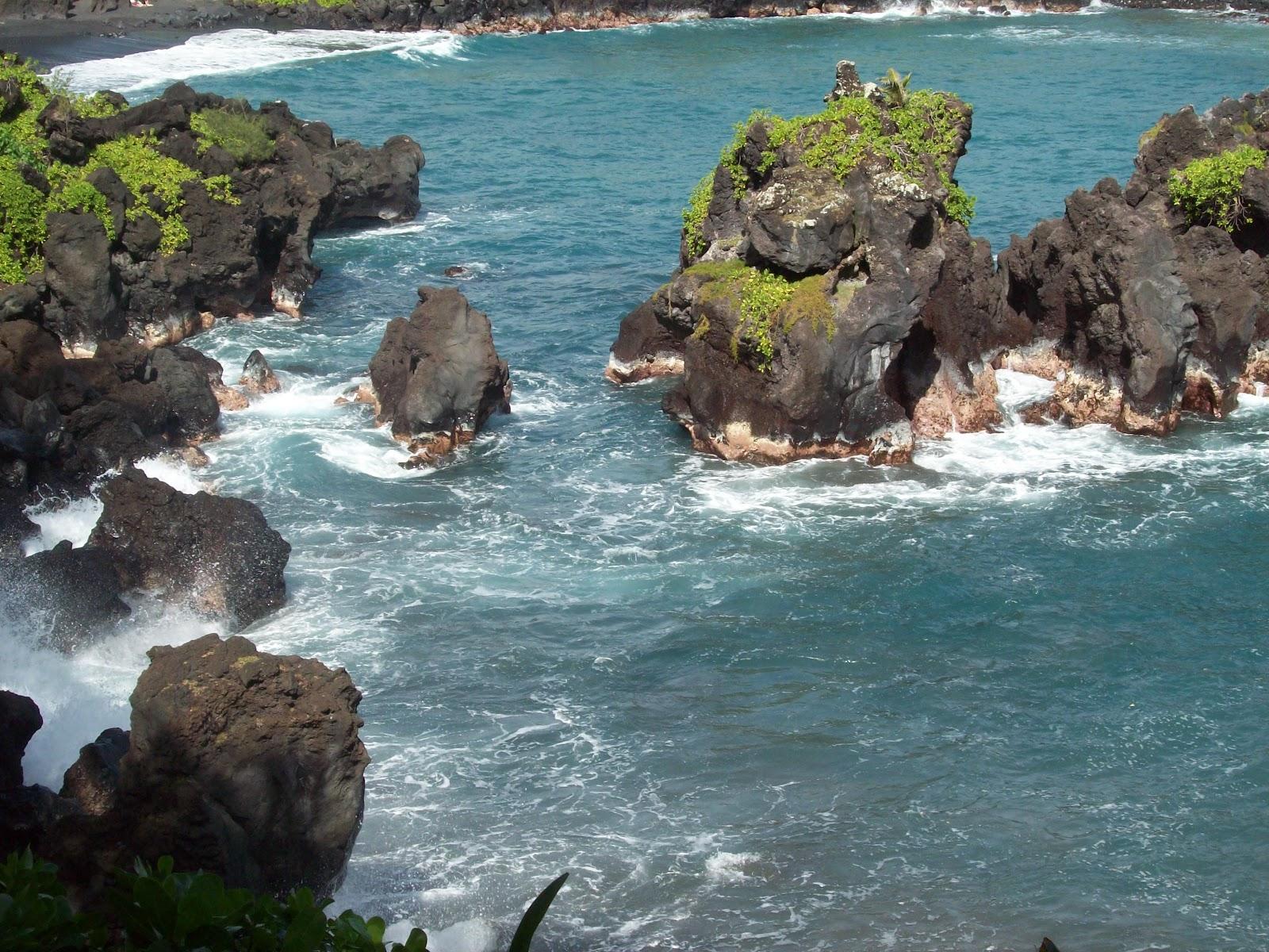 Hawaii Day 5 - 114_1547.JPG