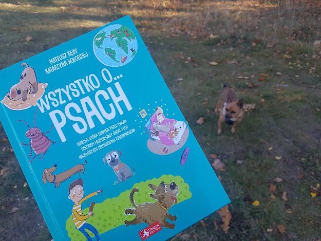 Zanim kupisz psa na prezent warto to przeczytać! - Okiem Sherlocka #47: Wszystko o Psach