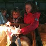 Bevers & Welpen - Boerderij bezoek - 2014-03-22%2B10.12.22.jpg