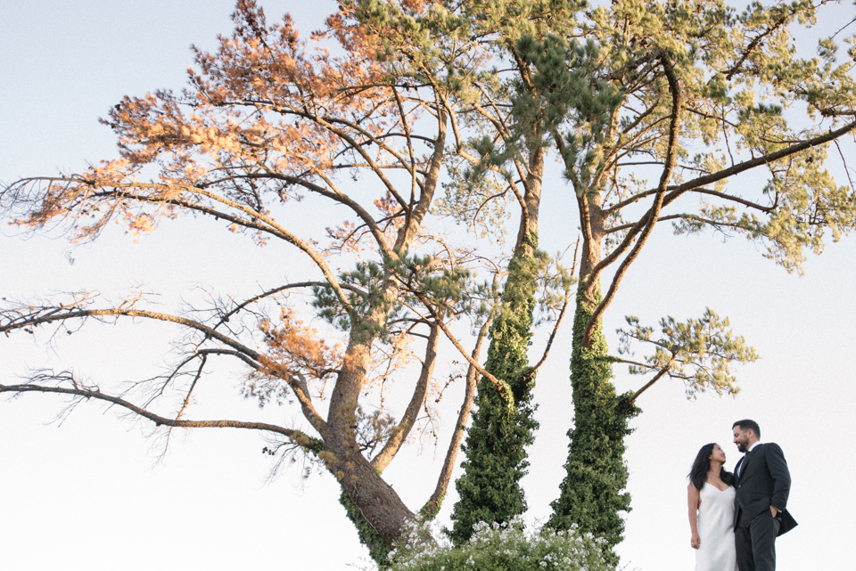 Grace and Alfonso wedding Clouds Estate Stellenbosch South Africa shot by dna photographers 774.jpg