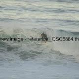 _DSC5884.thumb.jpg