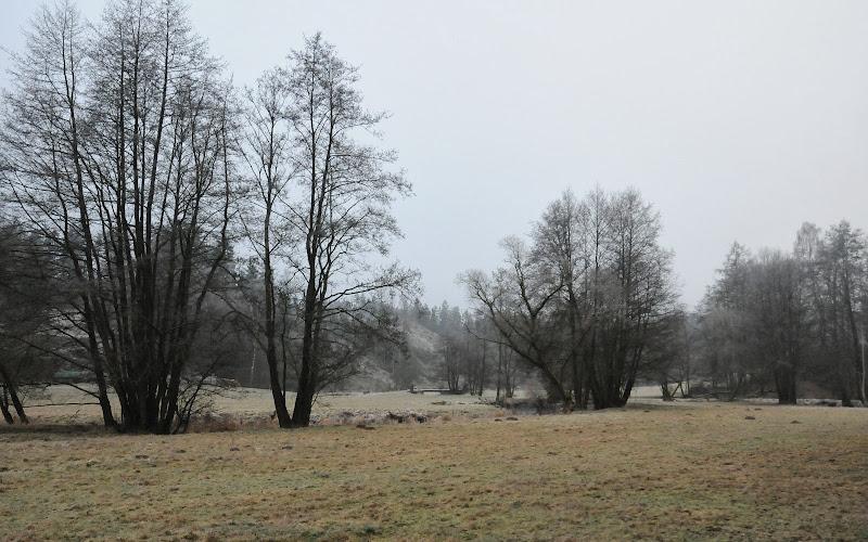 20140101 Neujahrsspaziergang im Waldnaabtal - DSC_9791.JPG