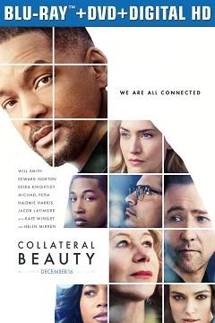 Gizli Güzellik - 2016 BluRay (720p - 1080p) DuaL MKV indir