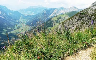 Blick insHintersteiner Tal von der Hinteren Schafwanne Allgäu Tirol Rauhhorn