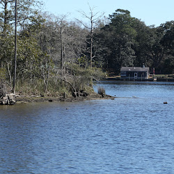 Fowl Marsh from Boat Feb3 2013 160