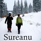 2010-12-13 Sureanu