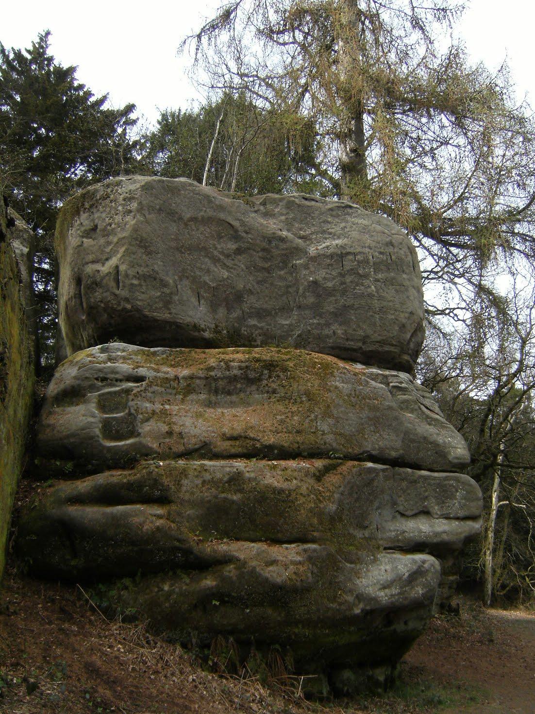 DSCF7081 Eridge Rocks