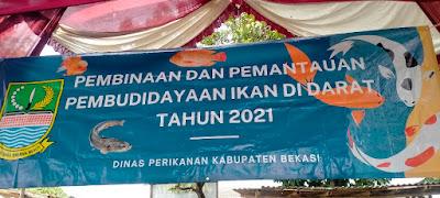Dinas Perikanan Kabupaten Bekasi Lakukan Pembinaan Pembudidayaan Ikan Darat