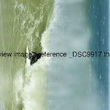 _DSC9917.thumb.jpg