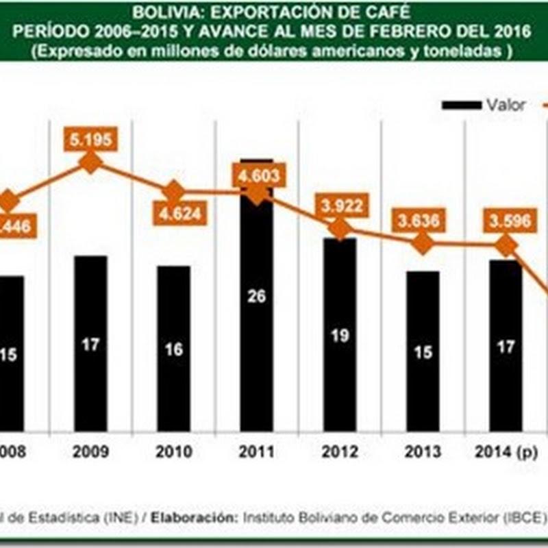 Bolivia: Exportaciones de café bajaron en valor y volumen en los últimos cinco años