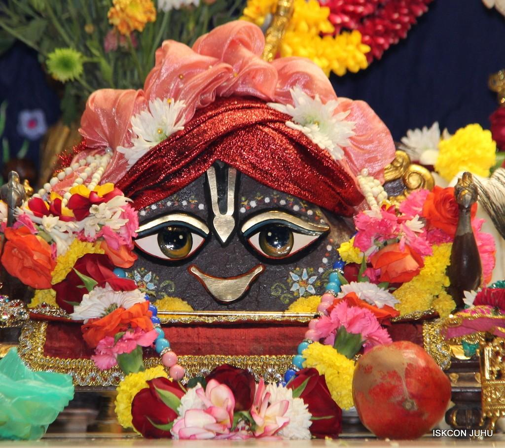 ISKCON Juhu Sringar Deity Darshan 22 Nov 2016 (12)