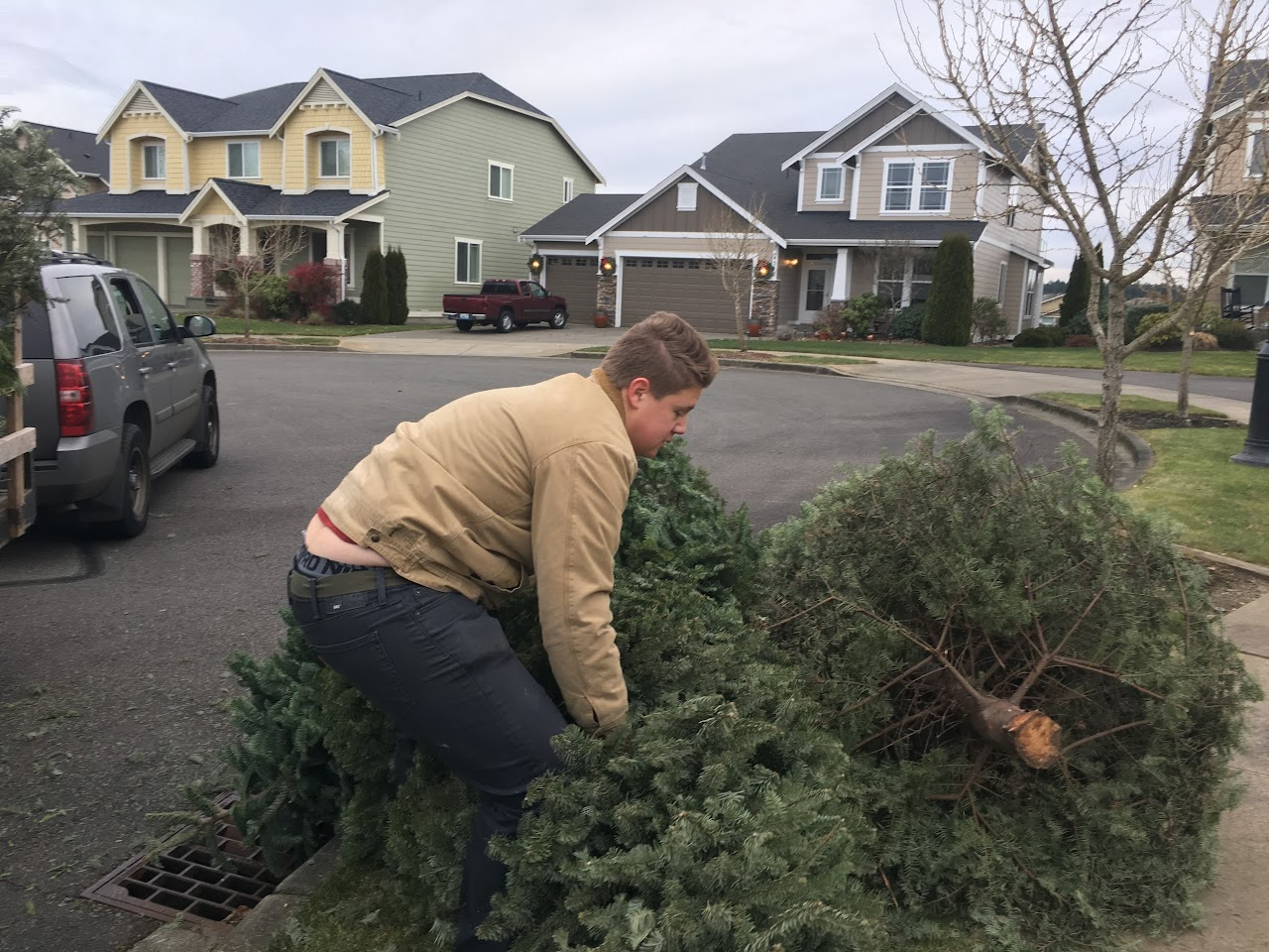 Christmas Tree Pickup - January 2017 - IMG_7002.JPG